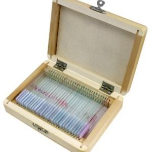 Bresser-30-preparazioni-per-Microscopio-Corpo-Umano-0