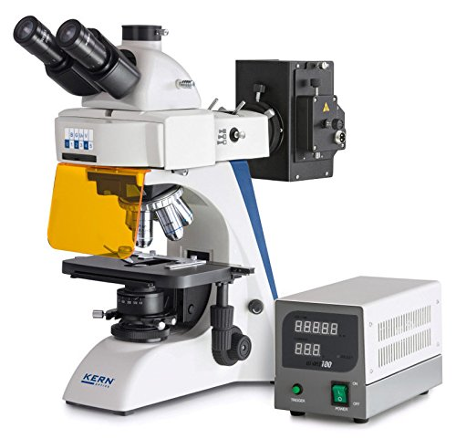 Compound-microscope-Fluorescence-Kern-OBN-148-The-fluorescent-product-for-the-professional-user-Optical-system-Infinity-Tube-Trinocular-Illumination-Halogen-100W-Epi-Fluorescence-B-G-UV-V-0