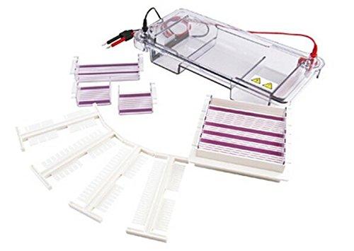 GOWE-orizzontale-lelettroforesi-acido-nucleico-purificazione-e-preparazione-di-140-x-140-gel-dimensioni-140-x-140-mm-140-x-70-mm-x-70-mm-x-70-mm-0
