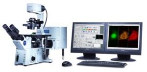 tracciare cellule tumorali citometria