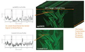 ccd o cmos per imaging di laboratorio
