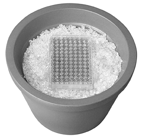 Estrazione di proteine di membrana da coltura cellulare