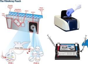 funzionamento filmarray di biofire biomerieux pcr per diagnosi diarrea