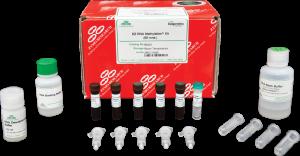 kit di metilazione rna