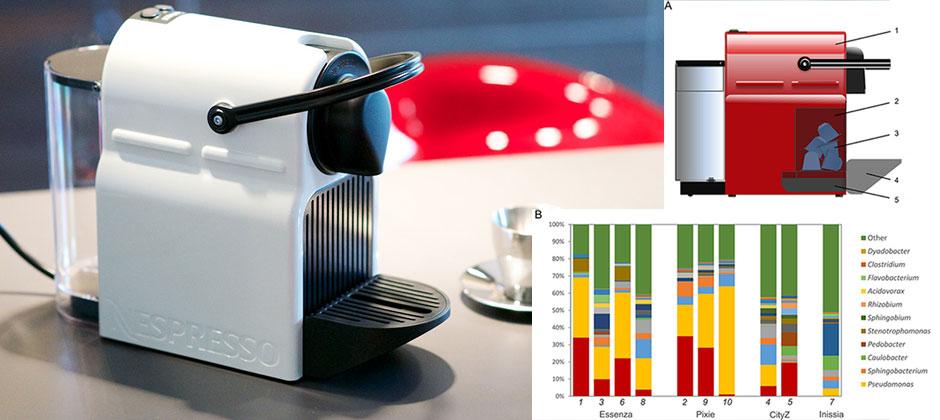 Macchina del caffe, analisi sistematica dei batteri presenti e crescita pool in 30 giorni