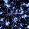 neuroni impianto sinapsi parkinson