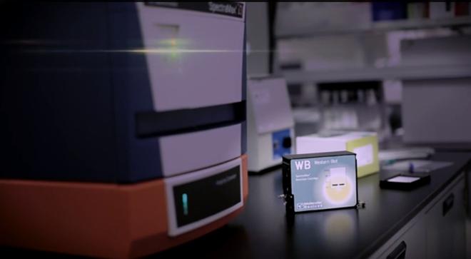 scanlater, il sistema in cartucce per western blot di Molecular devices
