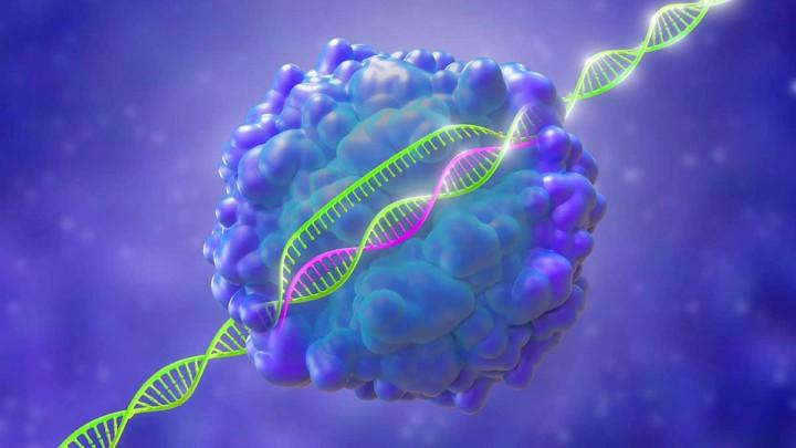Nuova tecnologia CRISPR per modificare l'RNA, compresi gli RNA Virus come il coronavirus