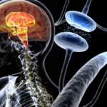 Parkinson, scoperto nuovo biomarcatore da ghiandole sottomandibolari